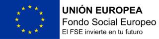 Logotipo FSE.